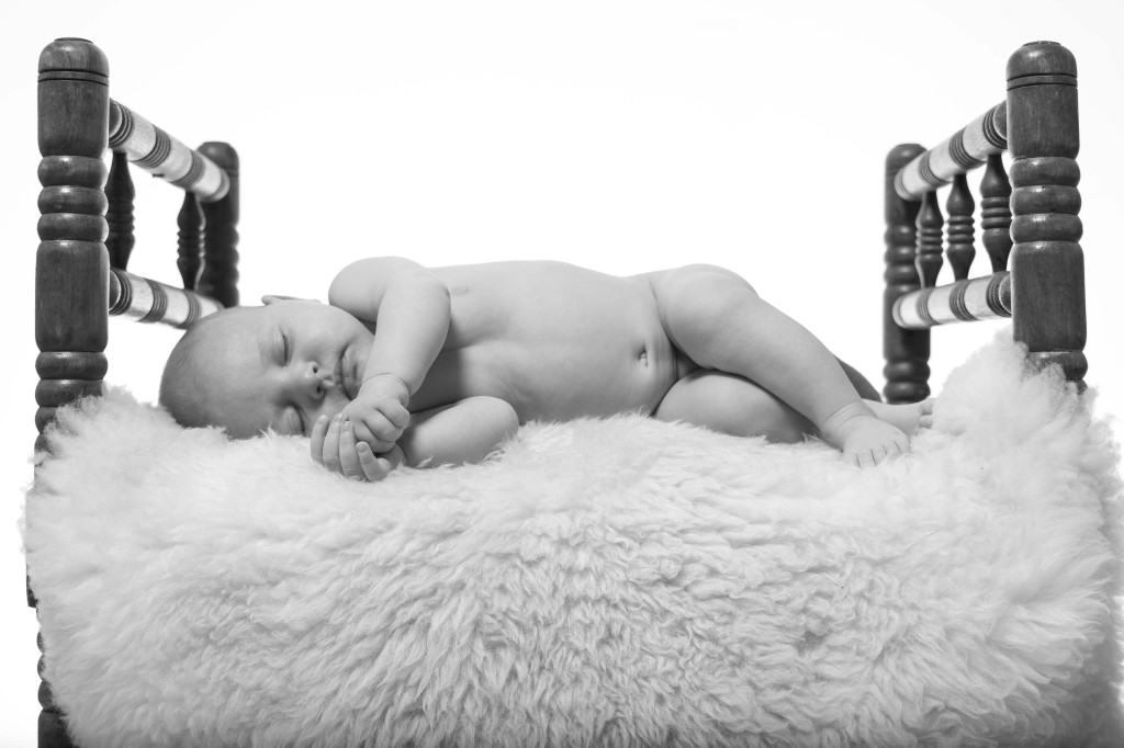 Baby Lou Robin